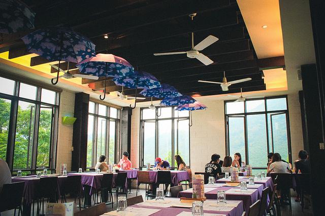 Lãng mạn sắc màu hoa oải hương ở Đài Loan