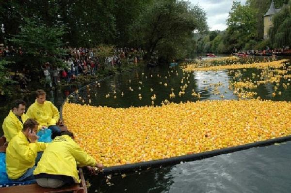 Tưng bừng lễ hội đua vịt nhựa ở Đức