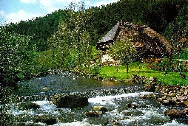 Black Forest khu rừng đen huyền bí ở Đức