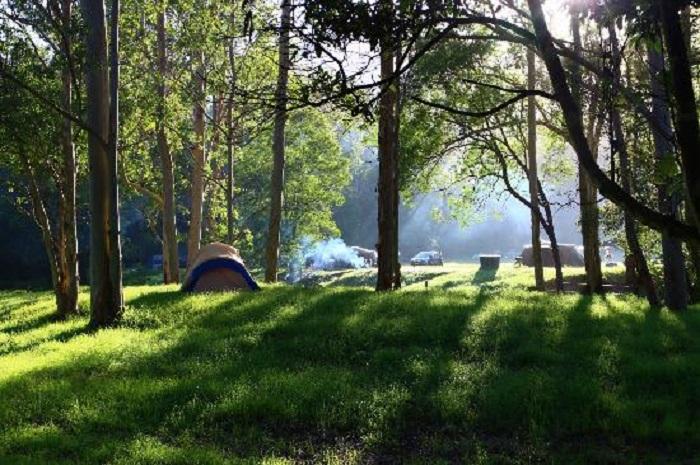 thung lũng Camp Fire