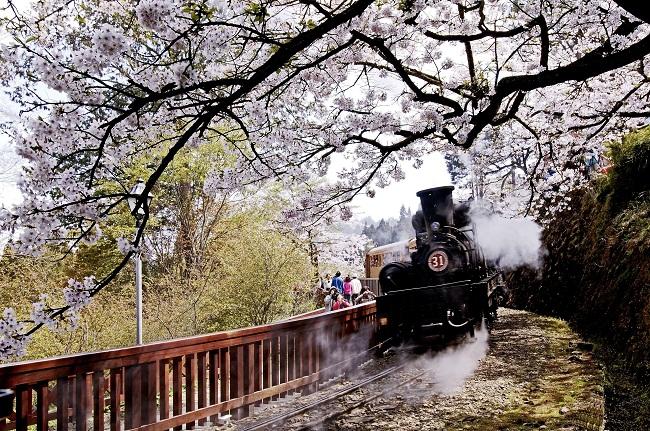 Chuyến xe lửa lên A Lý Sơn