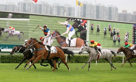 Ghé thăm trường đua ngựa Shatin ở Hong Kong