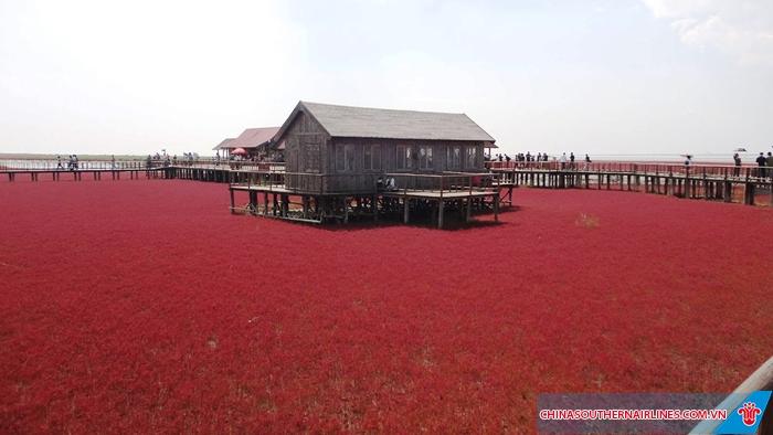 Khung cảnh tuyệt đẹp ở biển đỏ
