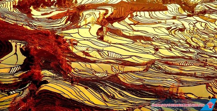 Ruộng bậc thang nhiều màu ở Vân Nam