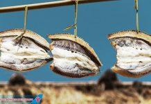 Cá Dibang - Đặc sản trên đảo Batanes